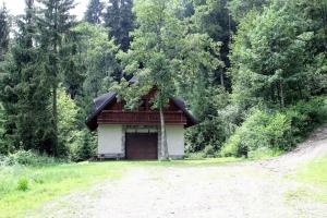 obrázek - holliday house in Maribor Pohorje