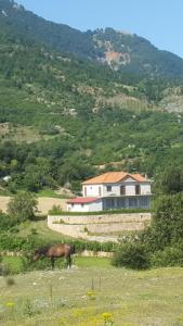 Villa BUSH