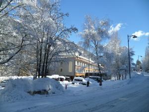 Residence Kristall - Chalet - Marilleva