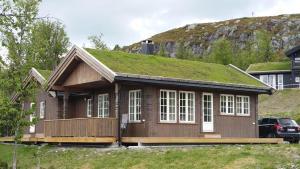 Bergestua 4 bedroom cabin