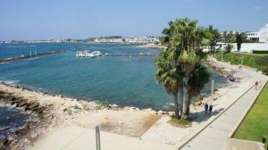 Zeige 101 110 Von 612 Unterkunftsanbieter In Paphos Zypern An