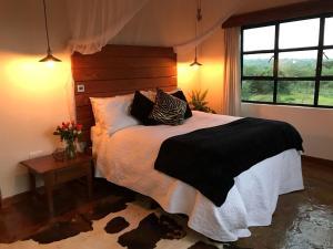 Punda Milias Luxury Bush Retreat