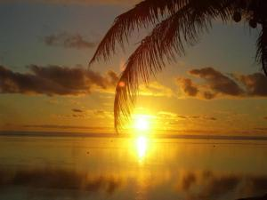 Coral Palms Executive Beachfro..