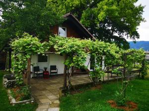 Guesthouse ANKL