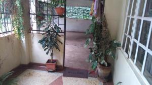 KenDuya Home