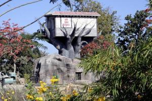 Una foto de Tree House
