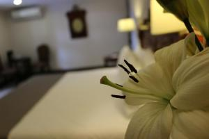 Los Abolengos, Grand Class Casona Hotel Discount