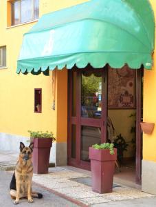 obrázek - Hotel Trasimeno