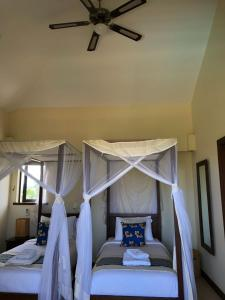 A Picture of Samaki House