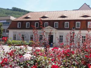 Haus Feuchtl, Guest houses  Purkersdorf - big - 35