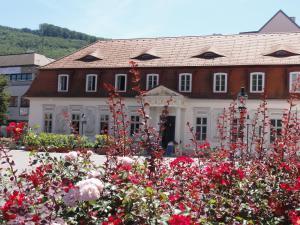 Haus Feuchtl, Pensionen  Purkersdorf - big - 35