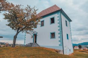 Wine Grower's Mansion Zlati Gric