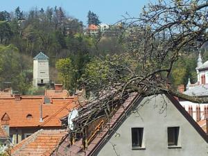 Apartament Wilhelmine, Apartmanok  Brassó - big - 21