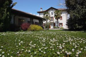 Nearby hotel : D'Orsaria B&B And Wines