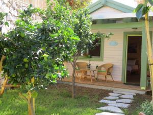Anat's Cabin הצימר של ענת