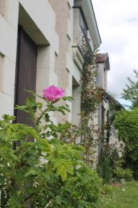 Gite de Charme, Nyaralók  Saint-Aignan - big - 23
