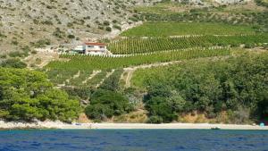 Beach Villa Majda
