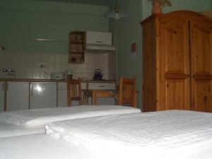 Apartments-Mini-Hotel, Appartamenti  Csongrád - big - 7
