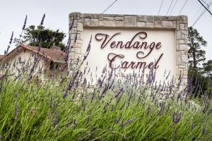obrázek - The Vendange Carmel Inn & Suites
