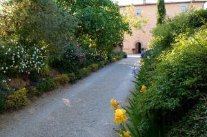 (Villa Cicolina)