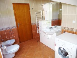 Villa Roses Apartments & Wellness, Apartmány  Ičići - big - 41