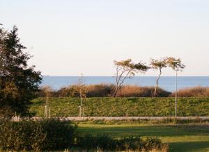 Ferienwohnungen Strandvilla Börgerende, Apartmány  Börgerende-Rethwisch - big - 61