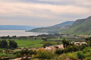 A Picture of Sweet Sol Sea Of Galilee