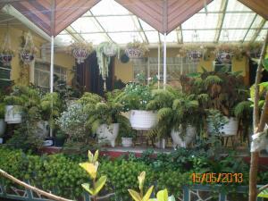 obrázek - Habitaciones Betito
