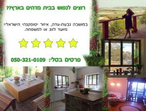 Givat Ada