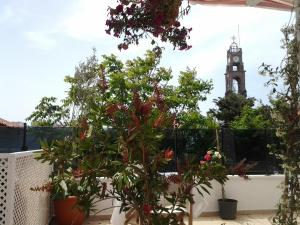 Bozcaada Su Hotel, Hotely  Bozcaada - big - 5