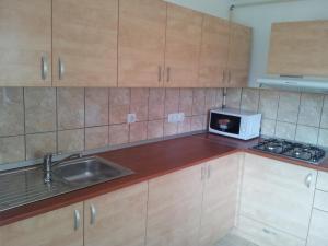 Apartament Wilhelmine, Apartmanok  Brassó - big - 4
