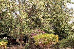 Yuna Village Garden Resort