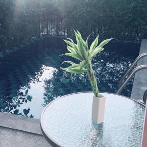私人泳池别墅Private Pool Villa