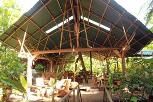 Danta Corcovado Lodge photos