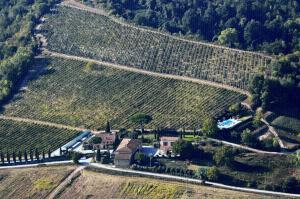 Azienda Agricola Buon Riposo, Vidiecke domy  San Giovanni a Corazzano  - big - 48