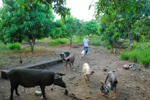 Villa Don Jose Otano Ecological Farm