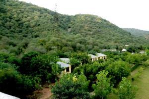 Sariska Jungle Camp