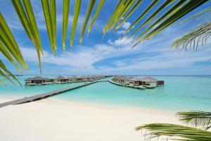 obrázek - Paradise Island Resort & Spa