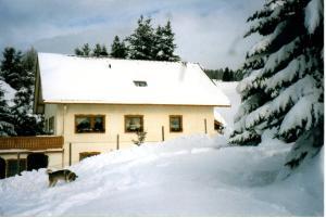Haus Talblick, Apartmanok  Ibach - big - 18