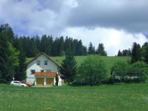 Haus Talblick, Apartmanok  Ibach - big - 13
