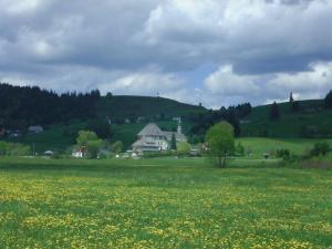 Haus Talblick, Apartmanok  Ibach - big - 53