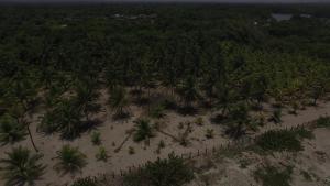 A Picture of Cabañas Laguna beach