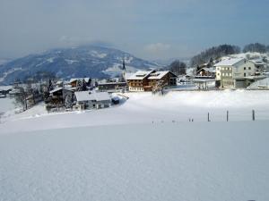 Genusshotel Alpenblick - Hotel - Lingenau
