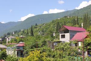Мини-гостиница Званба - фото 18