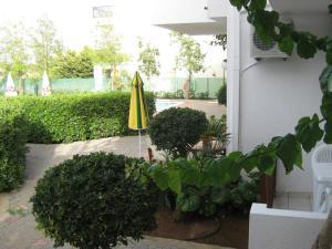 Vlychada Apartments, Apartmány  Hersonissos - big - 20