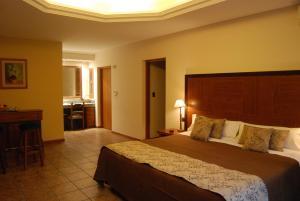 Suter Petit Hotel, Hotels  San Rafael - big - 50