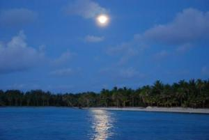 Blue Heaven Island, Лоджи  Бора-Бора - big - 39