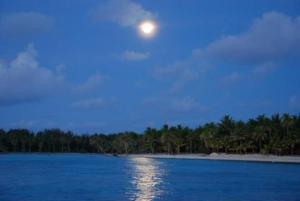 Blue Heaven Island, Lodges  Bora Bora - big - 39