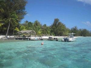 Blue Heaven Island, Lodges  Bora Bora - big - 15