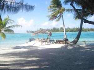Blue Heaven Island, Лоджи  Бора-Бора - big - 29